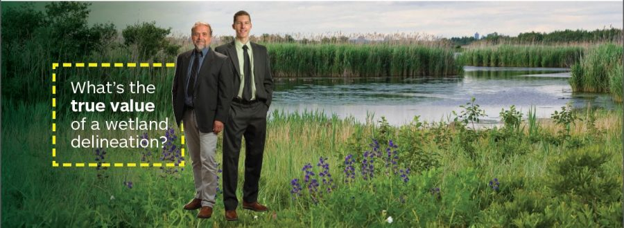 What is the True Value of a Wetland Delineation?